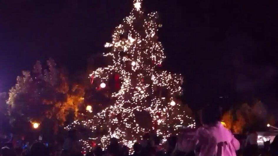 San Elijo Tree Lighting Ceremony